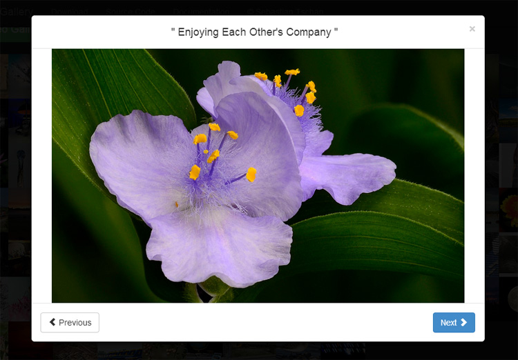 bootstrap-image-gallery