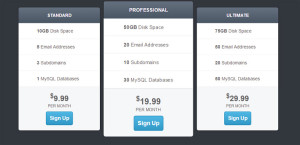 multiple-pricing-table