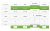 responsive-css3-pricing-table