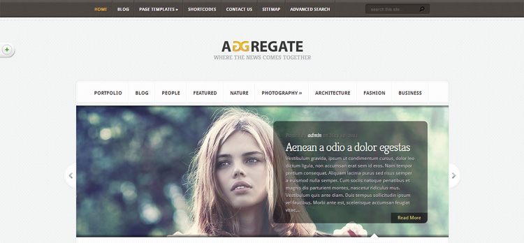 aggregate-wordpress-theme