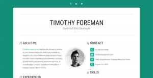 simpleness-cv-resume-template