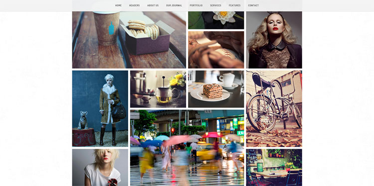finch-bootstrap-photography-template