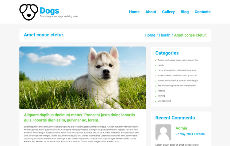 dog-responsive-wordpress-themes