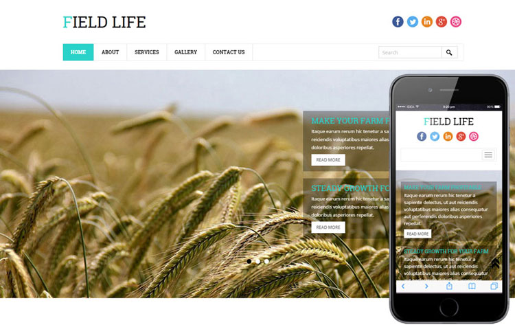 field-life-bootstrap-template