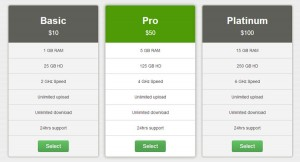 corporate-pricing-table